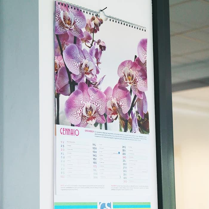 Calendario con spirale da parete